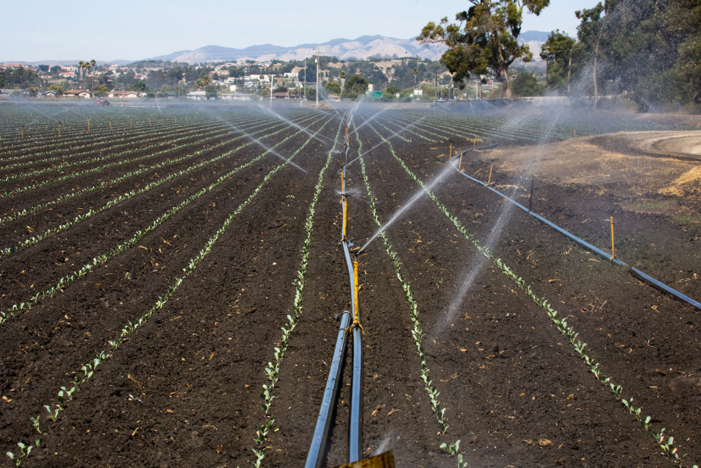 Since California doesn't consider groundwater a public good, no government agency is closely monitoring the state's usage.