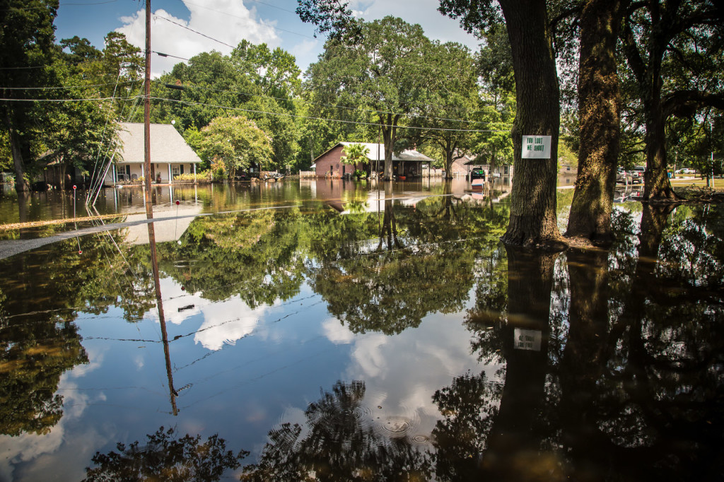 Still backflow water sits trapped in Assumption Parish, Louisiana, on Sept. 2. The local government made cuts in a road to give the water a path to drain.