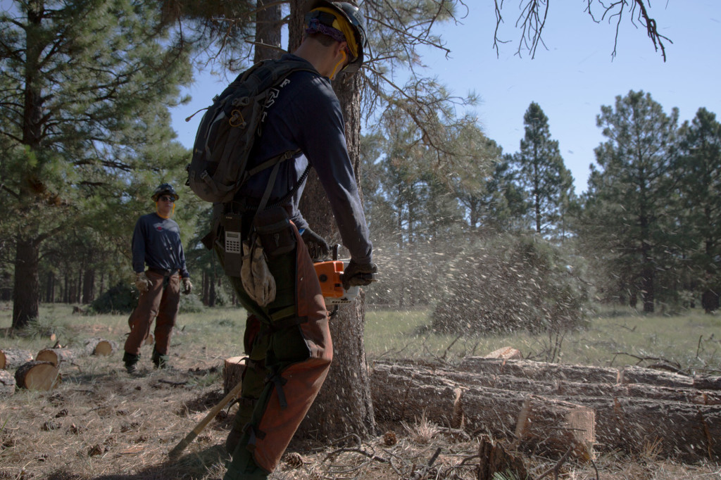 In 2010, the Schultz Fire burned more than 15,000 acres the Coconino National Forest outside Flagstaff, Arizona. City voters passed a $10 million bond to thin the forest near Flagstaff to limit potential damage from future fires.Credit: Emmanuel Martinez/Reveal