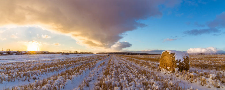 Αποτέλεσμα εικόνας για climate change Russia