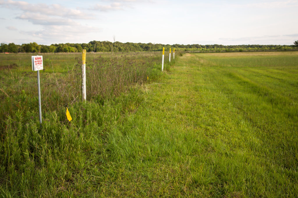 Pipeline markers stand on Hope Rosinski's property in Crowley, La. Her home is in the path of the Bayou Bridge pipeline, but she says she's determined not to let Energy Transfer Partners cross her land.