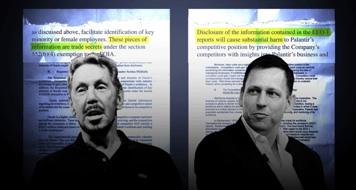 Oracle and Palantir said diversity figures were trade secrets  The