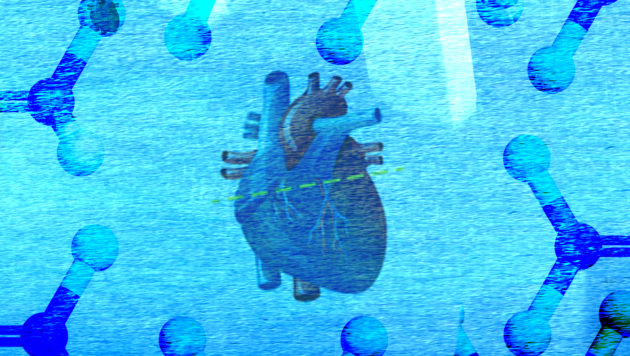 An illustration shows a heart against a blue foreground.